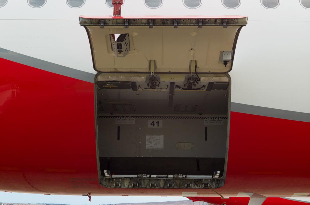 Cargo door protector